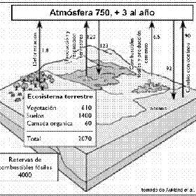 Carbona